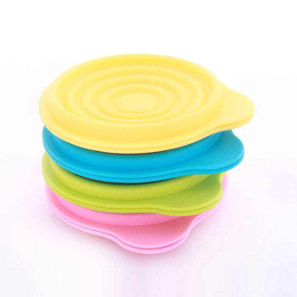 Small Foldable Storage Bowl