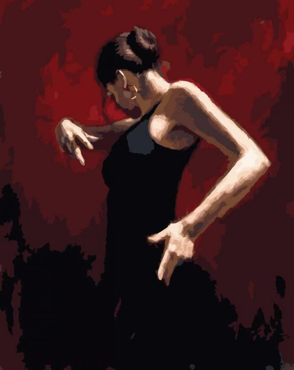 Paint By Numbers - Black Flamenco 2