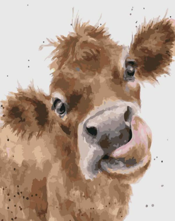 Paint By Numbers - Cow Watercolour