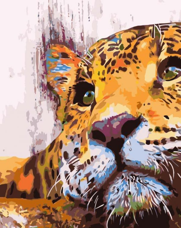 Paint By Numbers - Leopard Eyes