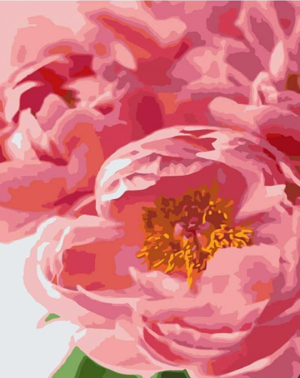 Paint By Numbers - Peony Bouquet (Pre-Order)