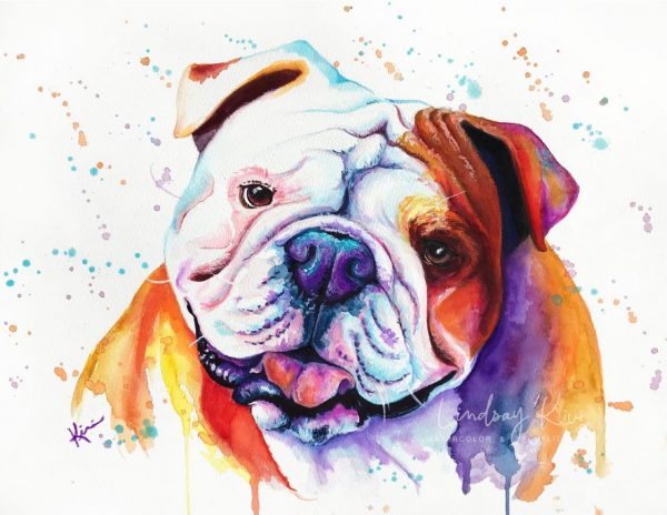 Paint By Numbers - Save our Bullies 1