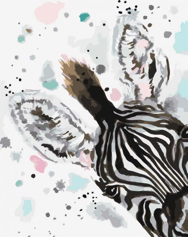 Paint By Numbers - Zebra Watercolour