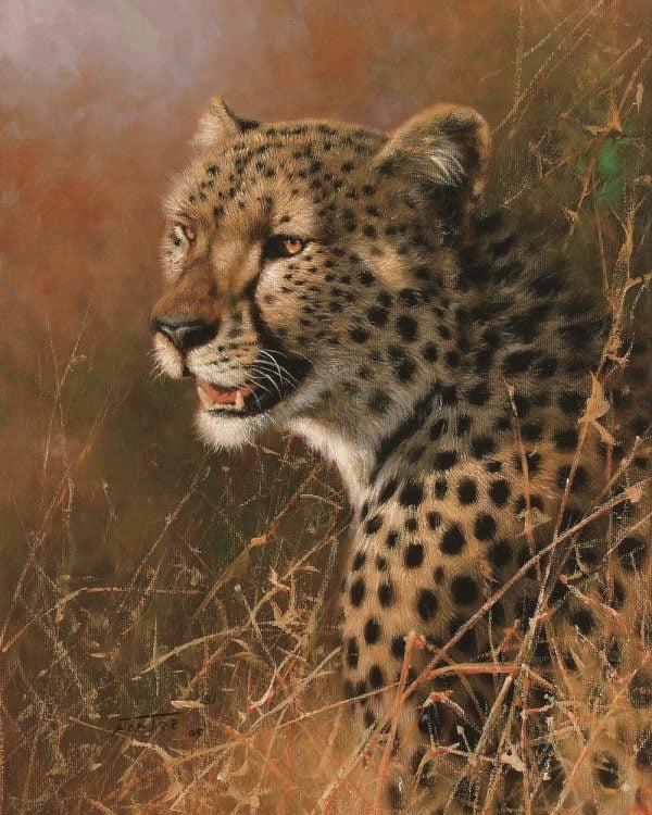 Paint By Numbers - Cheetah (Pre-Order)