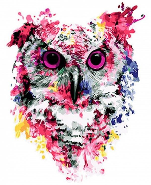 Paint By Numbers - Floral Owl (Pre-Order)