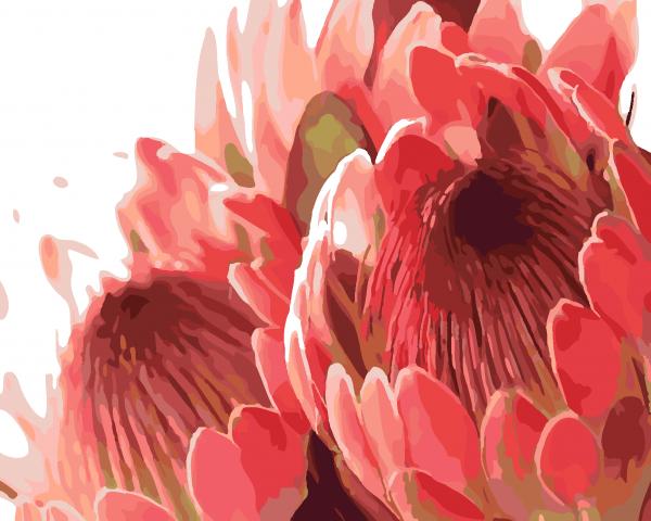 Paint By Numbers - Protea Arrangement (Pre-Order)