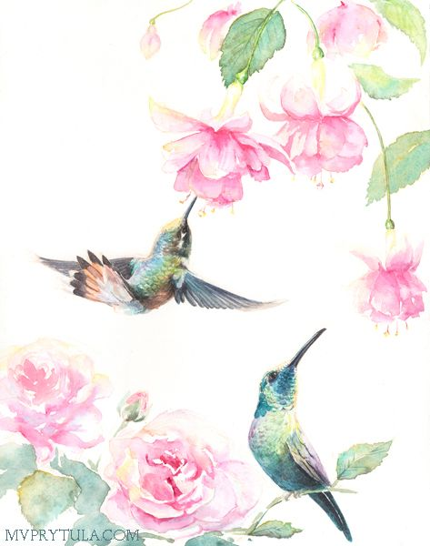 Paint By Numbers - Humming Birds 2 (Pre-Order)