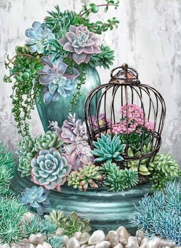 Paint By Numbers - Succulent Display (Pre-Order)
